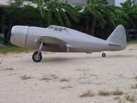 Carf  P-47 Razorback